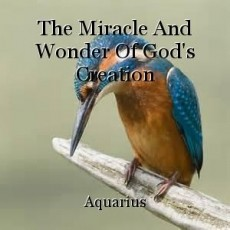 The Miracle And Wonder Of God's Creation