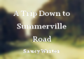 A Trip Down to Summerville Road
