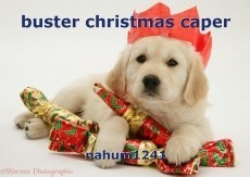buster christmas caper