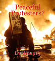 Peaceful Protesters?