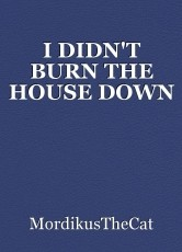 I DIDN'T BURN THE HOUSE DOWN