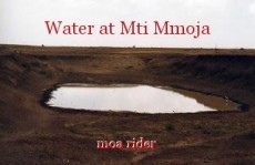 Water at Mti Mmoja