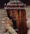 A Process and a Metamorphosis