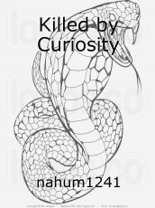 Killed by Curiosity