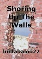 Shoring Up The Walls