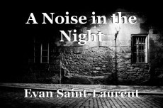 A Noise in the Night