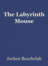 The Labyrinth Mouse