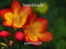 Sanctitude