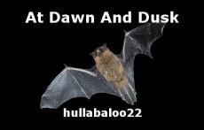 At Dawn And Dusk
