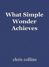 What Simple Wonder Achieves