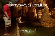 Everybody is Stealthy