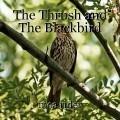 The Thrush and The Blackbird