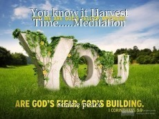 You know it Harvest Time.....Meditation