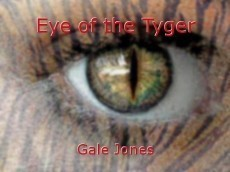 Eye of the Tyger