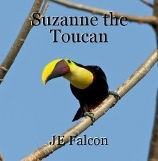 Suzanne the Toucan