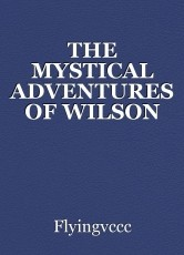 THE MYSTICAL ADVENTURES OF WILSON