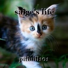 saige's life