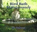 Bird Bath Maintenance