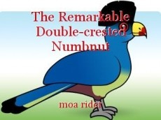 The Remarkable Double-crested Numbnut