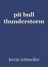 pit bull thunderstorm