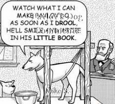 Pavlov's Dog Comments
