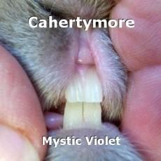 Cahertymore