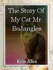The Story Of My Cat Mr. BoJangles