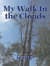 My Walk In the Clouds