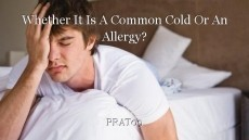 Whether It Is A Common Cold Or An Allergy?