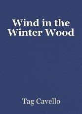 Wind in the Winter Wood