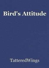 Bird's Attitude