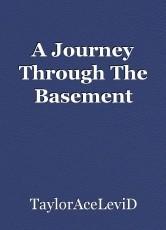 A Journey Through The Basement