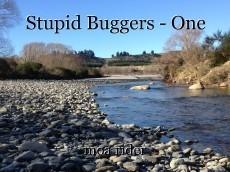Stupid Buggers - One