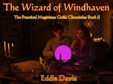 The Wizard of Windhaven -- The Practical Magicans Guild Chronicles Book II