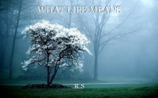 WHAT LIFE MEANS