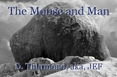 The Mouse and Man