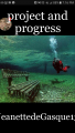 project and progress