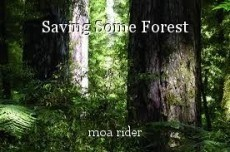 Saving Some Forest