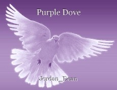 Purple Dove