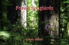 Forest Songbirds