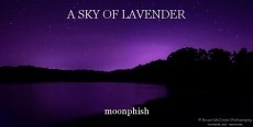 A SKY OF LAVENDER