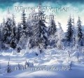 Winter's Wonder Moment