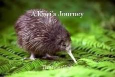 A Kiwi's Journey