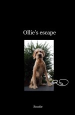 Ollie's escape