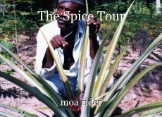 The Spice Tour