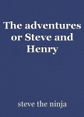 The adventures or Steve and Henry