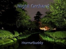 Night Orchard