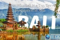 Reason Why Bali is a Top Travel Destination in Asia