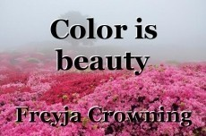 Color is beauty