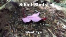 Silent Shots